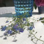 Malatempel, Vergissmeinnicht und blauer Chalcedon MG_1576